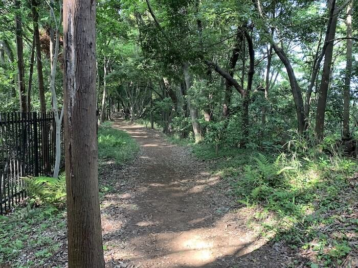 舞岡公園 登山路a