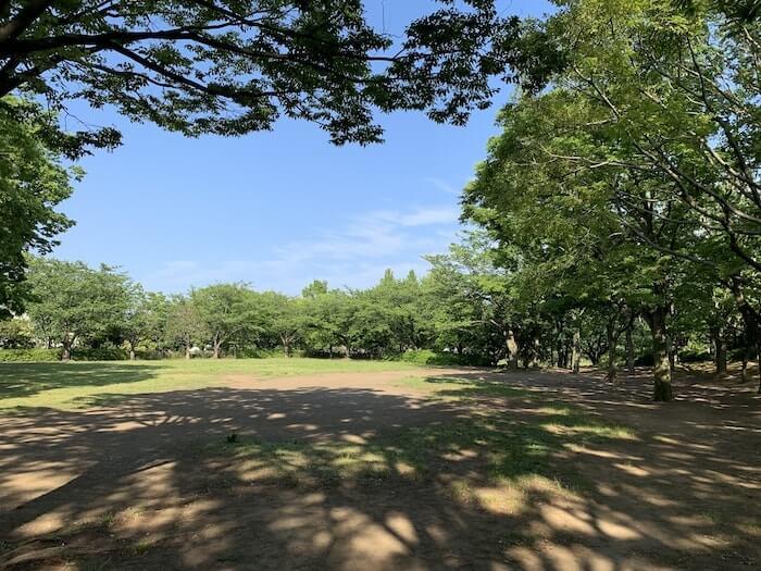 舞岡公園 中央広場