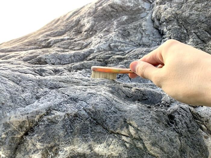 FAZAブラシ ラ・ランブラ 外岩