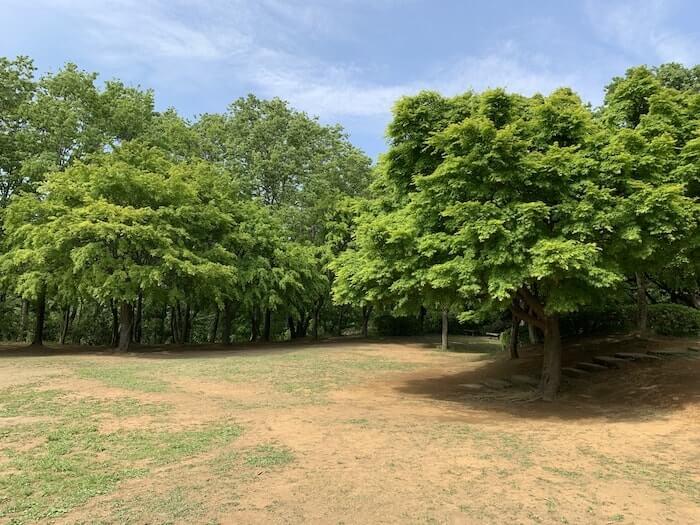 舞岡公園 広場2