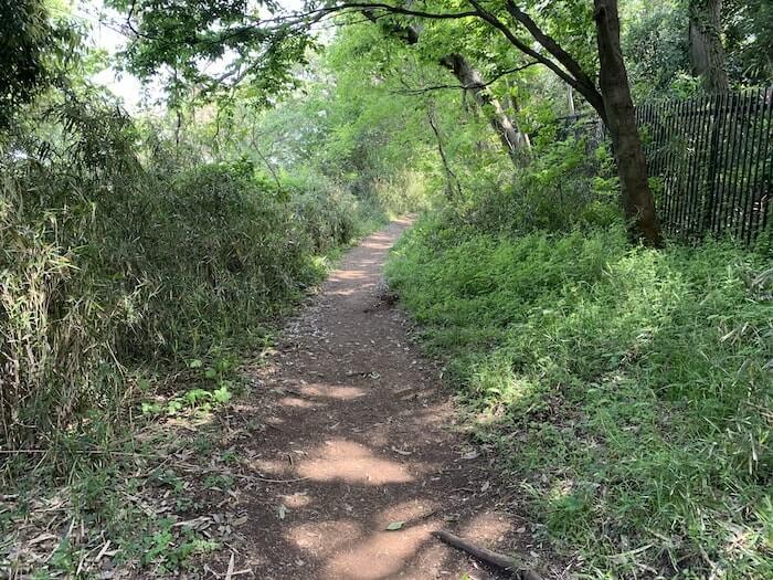 舞岡公園 登山道1