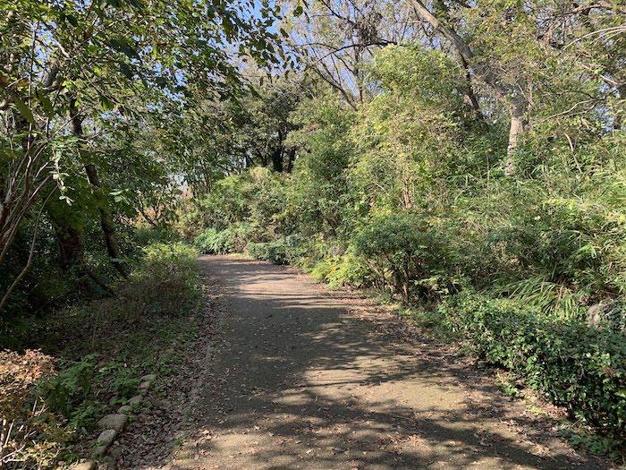 舞岡公園 秋の散策路