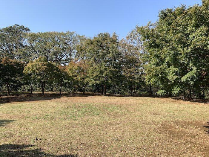 舞岡公園 秋 紅葉2