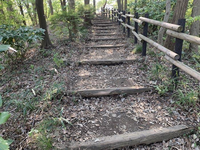 舞岡公園 散策路