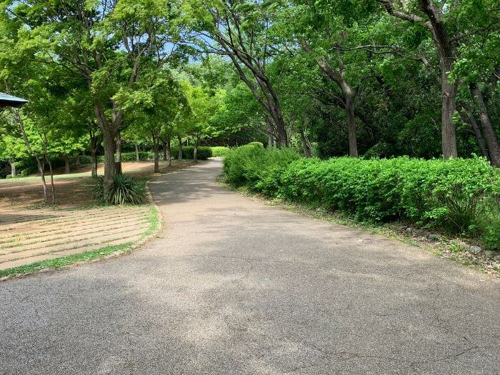 舞岡公園 遊歩道