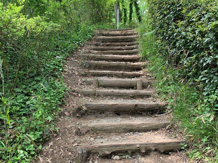 舞岡公園 階段