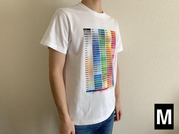 ユナイテッドアスレ 5.6ozハイクオリティーTシャツ Mサイズ 外観