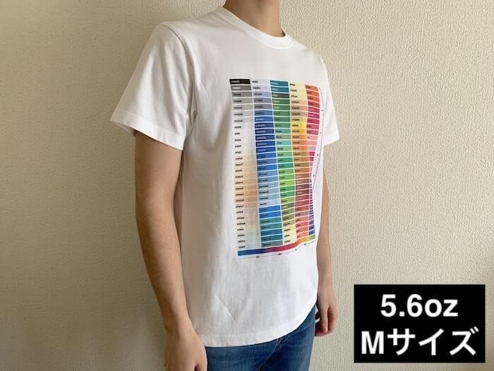 ユナイテッドアスレ 5.6ozハイクオリティーTシャツ Mサイズ 着てみた